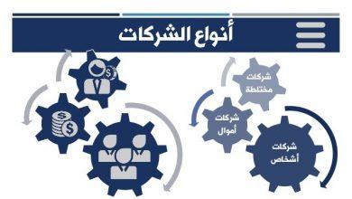 صورة الفرق بين أنواع الشركات في القانون المصري
