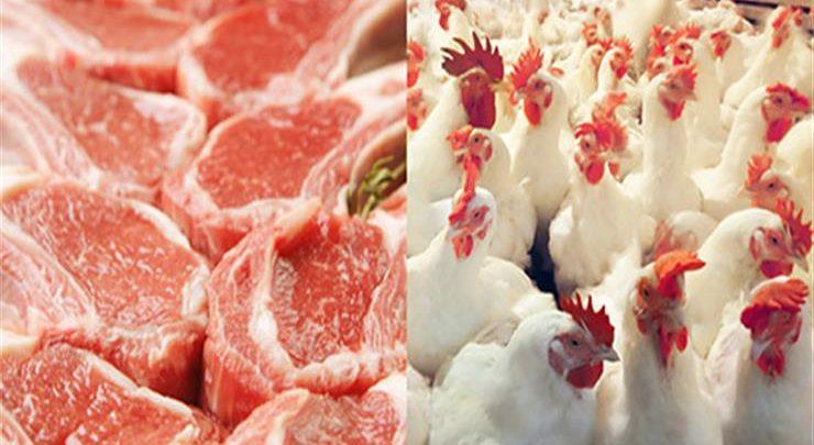 أسعار الدواجن واللحوم