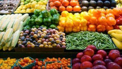 صورة الزراعة: ارتفاع صادرات مصر الزراعية لـ أكثر من 4.2 مليون طن