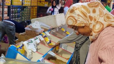 صورة بالصور الزراعة تستقبل عيد الاضحى المبارك بتخفيض أسعار السلع للمواطنين