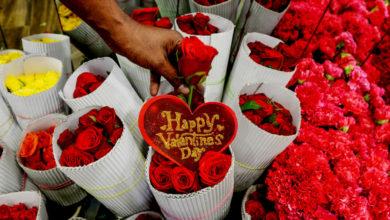 صورة رمز الرومانسية.. تعرف على سر ارتباط عيد الحب باللون الأحمر