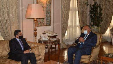 صورة وزير الخارجية المصري: الحل السياسي هو السبيل الأمثل لتسوية الأزمة في اليمن