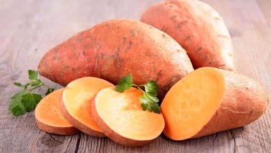 صورة فوائد ومخاطر البطاطا الحلوة