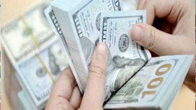 صورة سعر الدولار أمام الجنيه المصري اليوم الأحد 14-2-2021