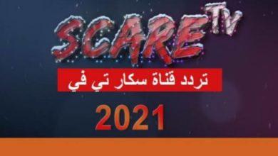 """صورة تردد قناة سكار تي في""""scare tv"""" الجديد 2021 على نايل سات"""