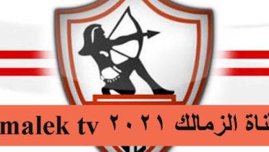 صورة تردد قناة الزمالك الجديد 2021 على نايل سات