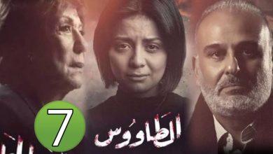 صورة مسلسلات رمضان 2021.. رابط وأحداث مسلسل الطاووس الحلقة 7