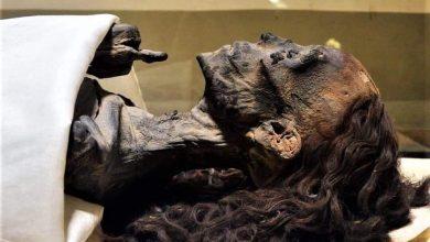 صورة جدل بسبب صورة الملكة تي .. تعرف على سر جمال شعر الفراعنة