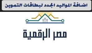 صورة عبر بوابة مصر الرقمية..خطوات إضافة المواليد الجدد إلى بطاقات التموين