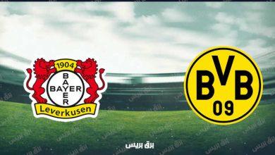 صورة موعد مباراة بوروسيا دورتموند وباير ليفركوزن القادمة والقنوات الناقلة فى الدوري الألماني